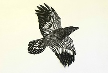 drawing, print making and illustration