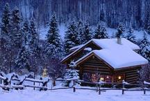 Winter... 'tis the season! / by Mary Jo Mohan