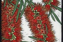 Botanically Inspired - Australian Flora Naturally / I am obsessed with Australian native plants - particularly the flowering ones. What a rich treasure trove of inspiration for art and craft endeavours - including my own!.