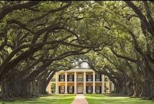 """Southern Charm / A Southern State of Mind...'we don't become Southern, we're born that way."""" / by Mary Jo Mohan"""