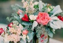 Wedding / by Meagan Francom