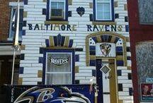 Baltimore Birds / by Shelley Blackburn