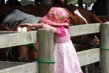 Kiwi Farm Life NZ