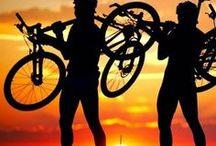Bikes / by Al Martin