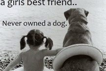 Woman's best friend / by Fran Gass