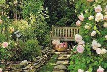 Daphne's Diary | Gardens / Allemaal prachtige tuinen aangelegd door professionele bedrijven. / by Daphne's Diary