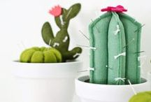 Daphne's Diary | Cactus & Succulents / by Daphne's Diary