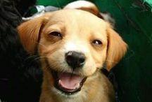 Smiling...
