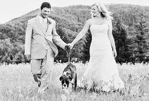 Wedding Photo Ideas / Fun Fabulous Wedding Photo Ideas
