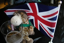 Draft the giraffe's travelog / Draft is a fun loving travel mad giraffe with short legs but long ideas. He loves traveling the world having his photo taken with the coolest people and in the hottest places.