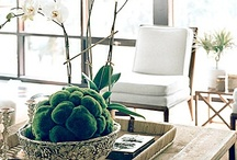 HomeStaging  with the color green