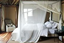 bedrooms / by Lamvy Le