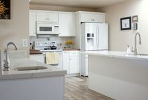 Kitchen Remodel / Kitchen Remodel Ideas and Projects