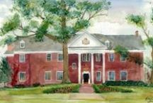    chi omega psi    / by Hannah Dull