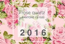 A cor de 2016 / Rose Quartz