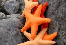 KLEUR   Orange and grey / Styling ID Kleur inspiratie. #wonen #woonideeën #woondecoratie #woonaccessoires #interieur #interieurtips #interieurideeën #interieurinspiratie #interieurdesign #interieurstyling #stylingtips #sfeer #kleur #grijs #oranje #grey #orange www.styling-id.nl