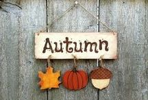 Autumn | Fall / Celebrating the stunning colours, textures and festivities, in that most wonderful auburn time of year; Autumn. Or for those across the pond the season known as Fall.