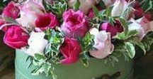Flower Bouquets etc.