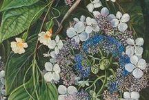 Цветы и растения / Inspiration flowers and herbs