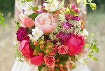 Gilt / Adorn, festoon, decorate, embellish, lavish.