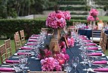Pink & Blue Wedding /  Jessica & Cayden / by Envelopments