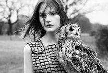 [ fashion___lookbooks | ads ]