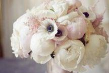 [ w e d d i n g___flowers ] / bridal bouquet | flowers | arrangements | decoration