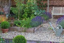 Garden ideas / by Cyndi Brody