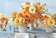 Orange/Grey/Yellow Bridal Shower / by Donna Andrews