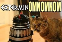 Doctor Who / Need I say more?  Those who get it will get it.  Those who don't ... well, sorry.  ;-) / by Debi Taylor-Hough