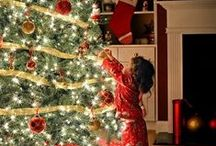 Deck the Halls for Christmas / Christmas decorating in the home.