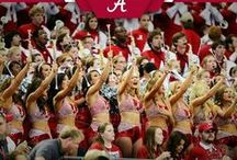 Alabama Crimson Tide / ~ Rammer Jammer Yellow Hammer ~ / by Barbara Ann