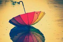 plenty of parasols / parasols, umbrellas / by Kristin Damstetter