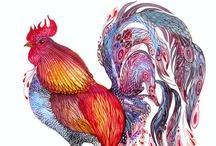 interesting illustrations / by Kristin Damstetter