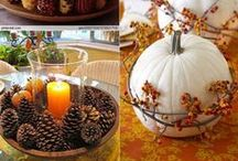 Ideas For A Perfect Thanksgiving