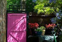 My Dream Yard / by Marilia BM Montemor