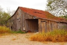 Barns / Barns are slowly disappearing around the area. This board is my way to recapture the memories of the times of the past.  / by Joanne Lee