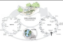 Permaculture / by Nathalie Huot