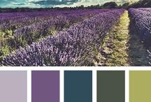 color combos / by Debbie Buchholz