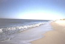 Beach Vacation / by Velda Roberts