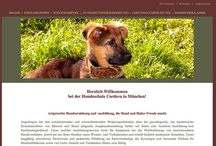 Hundeschule München - Dog `s Academy