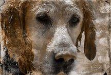Giulio und die Mysterien der Liebe. Eine Hundeliebesgeschichte / »Die Liebe ist der Ursprung des Guten und des Göttlichen. Von dem Moment an, wo zwei Wesen zusammentreffen und sich füreinander entscheiden, gehören sie unverbrüchlich und schicksalhaft zusammen. Ihre beiden Seelen verschmelzen zu einer.«  Nichts verbindet so sehr wie die magische Kraft der Liebe. Das gilt auch für Wesen von anderer Gestalt. Schön länger kursieren Gerüchte, dass sich in der Beziehung zwischen Mensch und Hund ganz geheimnisvolle Dinge abspielen ...  http://www.mysteriesoflove.de