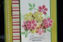 spring catalog and SAB 2013