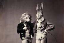 Animals Dressed as Humans!//