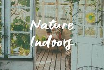 Nature Indoors (Mother Earth in Your Home) / Plant Realm | Mother Earth | Indoor Plant Inspiration | Earth Element | House plants | Nature Indoors