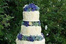 Cake / by misae