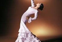 Flamenco / by misae