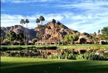 Palm Desert & La Quinta / Palm Desert & La Quinta = Love, Love, Love... / by Trish Herzog