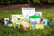 The Vegan Cuts Dog Box / Take a peek at all the amazing brands featured in the Vegan Cuts Dog Box.  Pamper your pooch with our special edition box just for pups!   http://bit.ly/vegan-dog-lovers-box