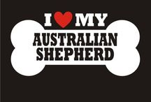 For Charlie <3 / I have an Aussie (Charlie) that is spoiled. He is my baby. / by Jessica Smith
